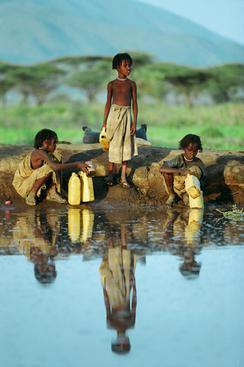 Ethiopia Three Boys Gather Water from Pond.jpg